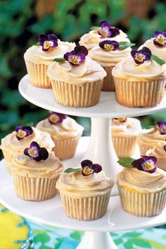 Old Fashioned Caramel Cupcakes - Our Favorite Fall Desserts - Southernliving. Recipe: Old Fashioned Caramel Cupcakes  You can't go wrong with tried-and-true yellow butter cupcakes. But you can turn them into one of the best desserts ever – just add old-fashioned caramel frosting.