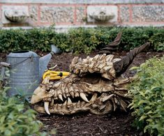 Dragon Skull Statue, this will look so good in the garden