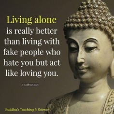 582 Best Buddha Quotes Images In 2019 Buddhist Quotes Buddha