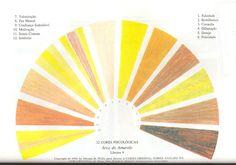 12 cores psicológicas - arco amarelo