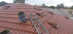 Stuart Scott, Roof Tiles, Plumbing, Bedding, Natural, Wood, Woodwind Instrument, Bed Linens, Trees