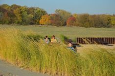 Kroniki Inowrocławskie: Upajanie się urodą jesieni........ Vineyard, Country Roads, Outdoor, Outdoors, Vineyard Vines, Outdoor Games, Outdoor Living
