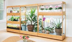 garden drawing How to Choose a Grow Light - LED Grow Lights Indoor Gardening Supplies, Garden Supplies, Garden Tools, Garden Ideas, Growing Vegetables Indoors, Herbs Indoors, Bamboo Trellis, Tiered Garden, Plant Lighting