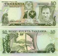 Tanzanian Currency