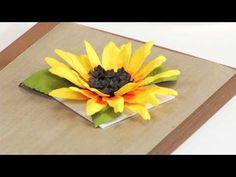 Susan's Garden Sunflower