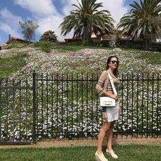 Les deseo una semana tan alegre como esta foto; con flores, naturaleza y excelente vibra! Beijos a todos 💋 #CaliLife 🌴