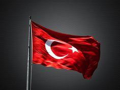 From Türkiye/Turque/Turkei/Turkey ✌ we're one ! Local Dentist, Dental Assistant, Flag, Art, Twitter, Turkish Lira, Website Logo, Nautilus, Antalya