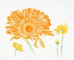 Etchings and Editions Archives - Carol Lambert Artist