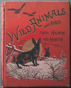 Wild Animals and Birds: Their Haunts and Habits (book cover)