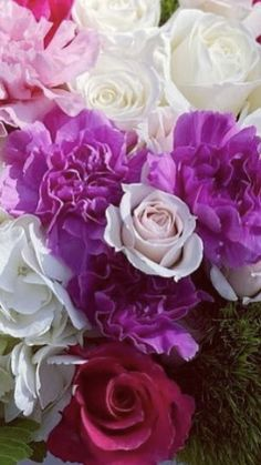 Wholesale Flowers And Supplies, Wholesale Flowers Online, San Diego, Wedding Flowers, Heaven, Rose, Plants, Sky, Pink