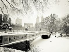 Nyc Photograph - Winter - New York City - Central Park by Vivienne Gucwa Winter Szenen, Winter Time, New York Winter, New York Snow, Winter Season, London Winter, Winter Magic, Winter Travel, Winter Fairy
