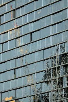 The photo was taken in with the tower crane reflecting in the certainly tells a story. Construction Sector, Central Park, Crane, Sydney, Reflection, Multi Story Building, Tower, Australia, Windows