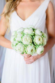 Beautiful white blooms. Photo: Corbin Gurkin