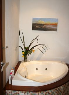 Well equipped with jacuzzi in its own, private bathroom with hot water shower and toilet.