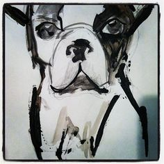 Boston Terrier...The dog with the largest heart, a heart and soul like a horse <3