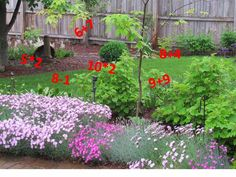 May Dreams Gardens: The Gardening Equation. Use it to figure out what to focus on this spring to improve your overall gardening experience.
