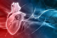New Drug Protects Heart from Cardiac Rupture after Myocardial Infarction - Drug Discovery and Development Bicuspid Aortic Valve, Types Of Shock, Percutaneous Coronary Intervention, Heart Valves, Myocardial Infarction, Cord Blood Banking, Atrial Fibrillation, Drug Discovery, Lunge
