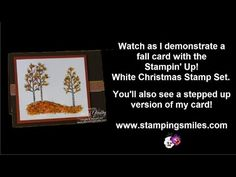 Not so (Stampin' Up!) White Christmas & Flower Soft card - YouTube