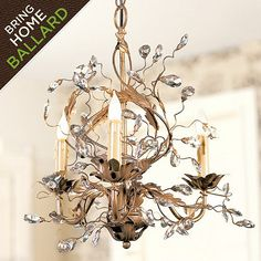 Petite Claire Chandelier...I'd love this gracing a bedroom or hanging above a clawfoot tub.