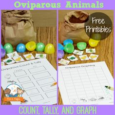 Free printables for teaching about oviparous animals in and # kindergarten Preschool Eggs, Preschool Letters, Preschool Printables, Free Printables, Nursing Printables, Pre K Pages, Montessori, School Fun, Spring School