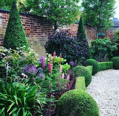 My favourite part of the garden I've been working in this week. Box balls, box hedging and yew cones, complimented by beautiful planting. Formal Gardens, Outdoor Gardens, Modern Gardens, Japanese Gardens, Amazing Gardens, Beautiful Gardens, Box Hedging, Topiary Garden, Beautiful Flowers Garden