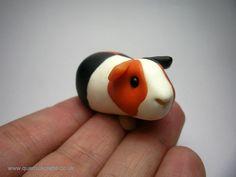 Polymer guinea pig--adorable!!! drb