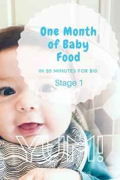 One Month of Baby Food (In 20 Minutes for $10) Stage 1 | homemade organic baby food purées | via The Crispy Mama