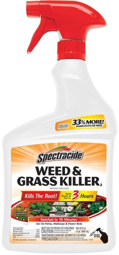 Spectracide Weed & Grass (Ready-to-Use) fl oz) Visible results as fast as 3 hours Kills the root Rainfast in 15 minutes Use around trees and shrubs, in flower beds and on patios and walkways Weed Killer Homemade, Grass Weeds, Diy Pest Control, Little Plants, Lawn Care, Flower Beds, Active Ingredient, Lawn And Garden, Spray Bottle