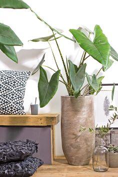 8x planten stylen in huis idee n voor het huis pinterest for Huis laten stylen