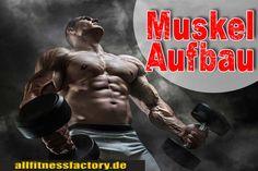 Muskelaufbau Ernährung beste Muskeln ohne Tricks Muskelaufbau Ernährung gesunder Weg zum optimalen Körper Wie wirkt eine gesunde Ernährung auf die Muskelentwicklung? Welche Rolle spielt Proteinaufnahme für Ihre Muskelaufbau Ernährung? Wie gestaltet sich die Kohlenhydrateaufnahme bei einer Muskelaufbau Ernährung? German Deutsch http://www.allfitnessfactory.de/muskelaufbau-ernaehrung/