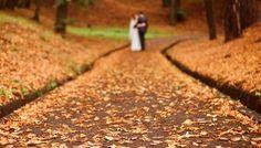 La guida di ELEMIS Italia per una pelle a prova di foto, per la sposa d'autunno! Nel turbinio dei preparativi, lo stress ed il nervosismo nell'organizzazione di un matrimonio, producono effetti indesiderati sulla pelle. Se poi il matrimonio è programmato in autunno, le cose si complicano perché la pelle, in questa stagione, tende a fare …