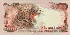 N ăm 1954, hiệp định Genève được ký kết , kết thúc nền đô hộ của Pháp trên bán đảo Đông Dương. Vĩ tuyến 17 được chỉ định là lằ... Vietnam History, South Vietnam, World Coins, Note Paper, The Republic, Custom Labels, Notes, Retro, Banknote