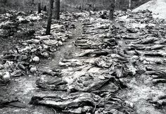 Dead Polish Officers from the Katyn Massacre dug up by Germans from a NKVD mass grave.