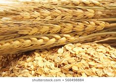 Close up of cereal grain whole rolled oats Rolled Oats, Cereal, Grains, Stock Photos, Food, Art, Art Background, Essen, Kunst