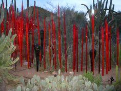 Chihuly Phoenix Botanical Gardens