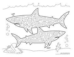 Shark Maze Illustrated by Tim van de Vall