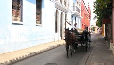 Horse and cart in Cartagena