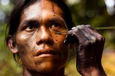Indigena Tikina, Amazonas