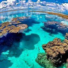 Praia Patacho litoral Norte de Alagoas