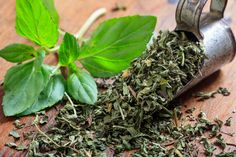 Bay Leaves, How To Dry Basil, Ale, Spices, Herbs, Fresh Mint, Character Design, Surface, Food