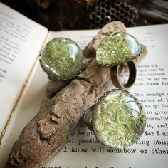 Filled some glass dome rings with that lichen I found yesterday. Preserved with resin. Aren't they cute?