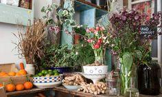 L'épicerie VéGéTALe, un cabinet de curiosités champêtre