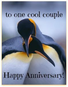Anniversary Wishes to Couple Satish and Sunita