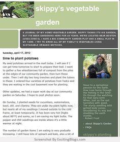 Gardening Blogs, Home Vegetable Garden, Sustainability, Organic, Vegetables, Vegetable Recipes, Sustainable Development