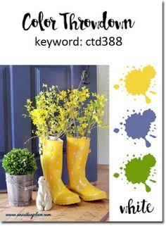 Color Throwdown #388