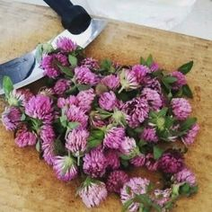 Health Advice, Organic Beauty, Life Is Good, Diy And Crafts, Detox, Floral Wreath, Remedies, Health Fitness, Hair Beauty