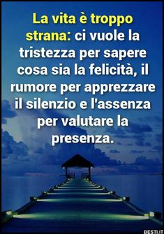 La vita è troppo strana | BESTI.it - immagini divertenti, foto, barzellette, video Phrases About Life, Best Quotes, Life Quotes, Wednesday Humor, Italian Quotes, Medical Humor, Italian Language, College Humor, Morning Humor