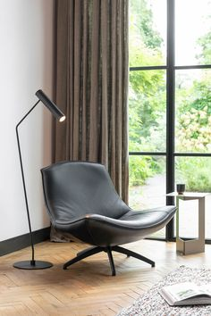 Armchairs, Lion, Relax, Modern, Furniture, Lounge Chairs, Wing Chairs, Leo, Couches