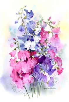 Watercolor Painting By: Rachel McNaughton Watercolor Projects, Watercolor And Ink, Watercolour Painting, Watercolor Flowers, Watercolors, Botanical Art, Painting Inspiration, Flower Art, Art Drawings