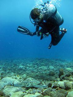 buoyancy master it